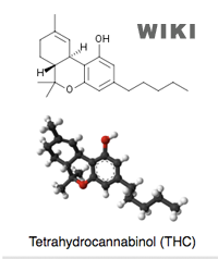 All About THC (Tetra-Hydra-Cannibinol)